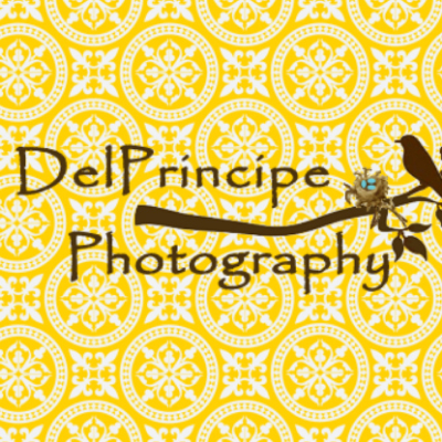 DelPrincipe Photography